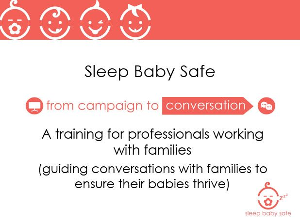 SBS Training for Professionals Working with Families